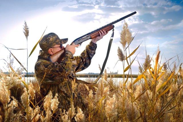 Как получить охотничий билет в 2020 году — получение охотничьего билета единого федерального образца через Госуслуги. Какие нужны документы для оформления? Фото на охотничий билет